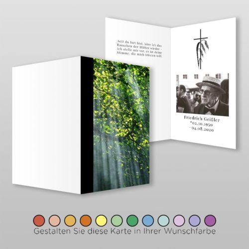 Trauerbildchen Forest (1)