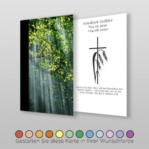 Trauerbildchen Forest (2)